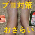 【WOMANブログ】キャンパー・ハイカーは要注意!ブヨ対策をおさらい(コバユリ)